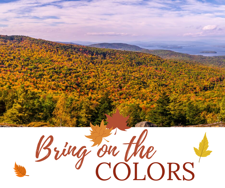 NH Fall Foliage Color Guide